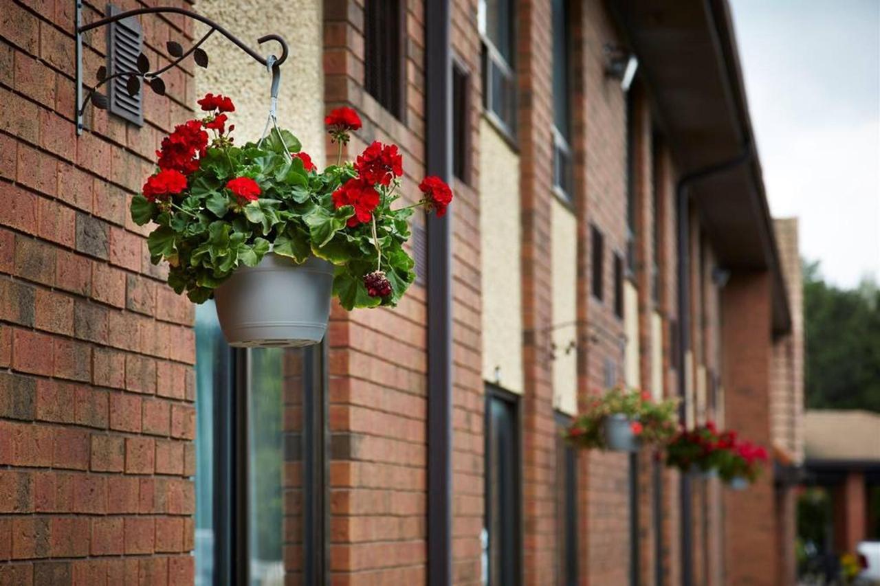 hanging-flowers.jpg.1024x0.jpg