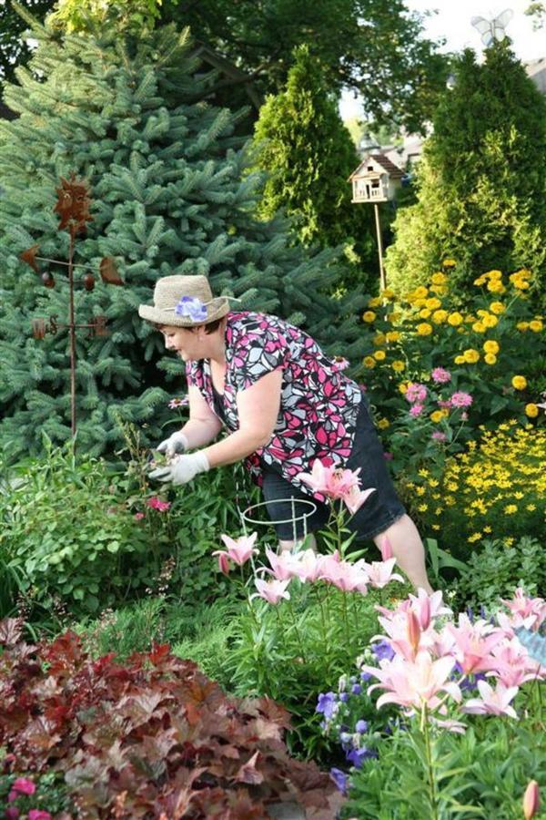 gardens-flower-cheri-good.jpg.1920x0.jpg