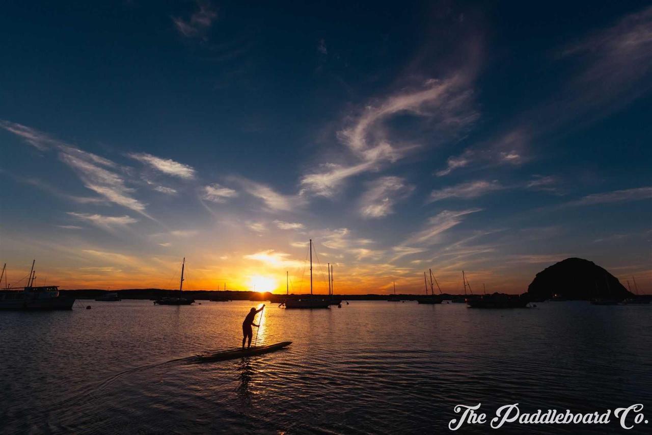 paddleboarding.jpg.1920x0 (1) .jpg