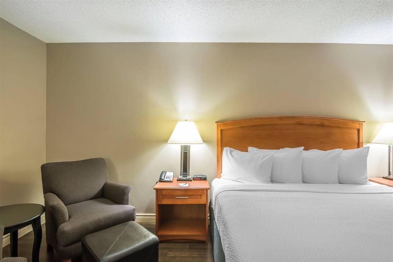 1 King Bed, No Smoking.jpg