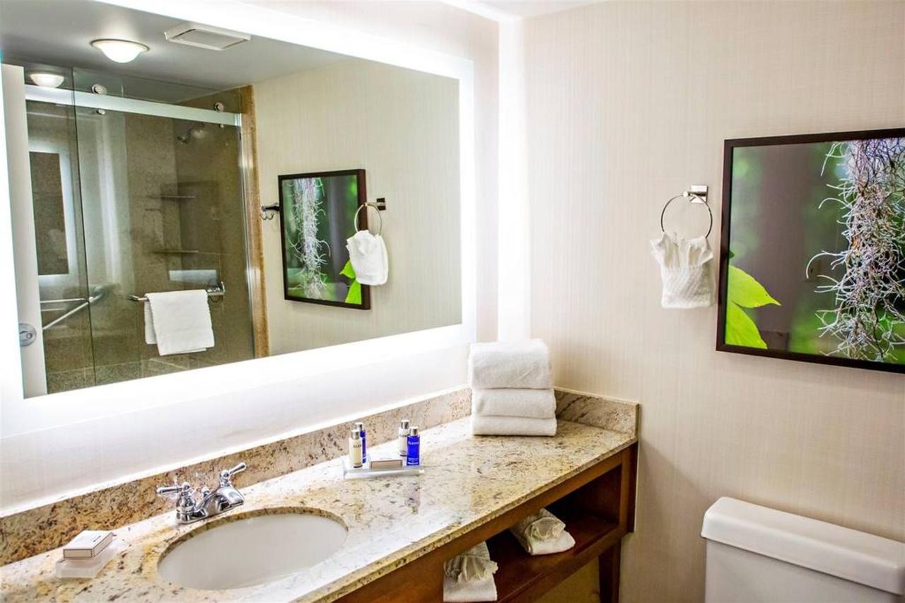 king-bath-1.jpg.1024x0.jpg