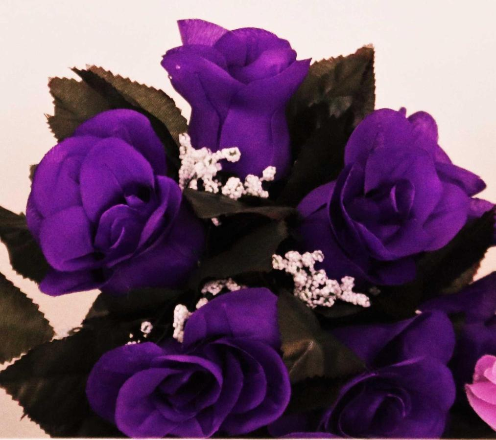 flowers-purple.jpg.1920x0.jpg