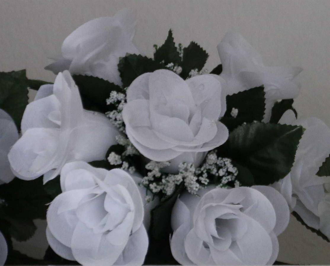 flowers-white.jpg.1920x0.jpg