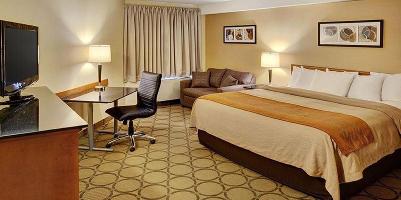 king-room.jpg.800x400_default.jpg