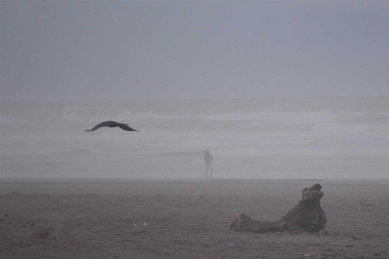beach5.jpg.1920x0.jpg