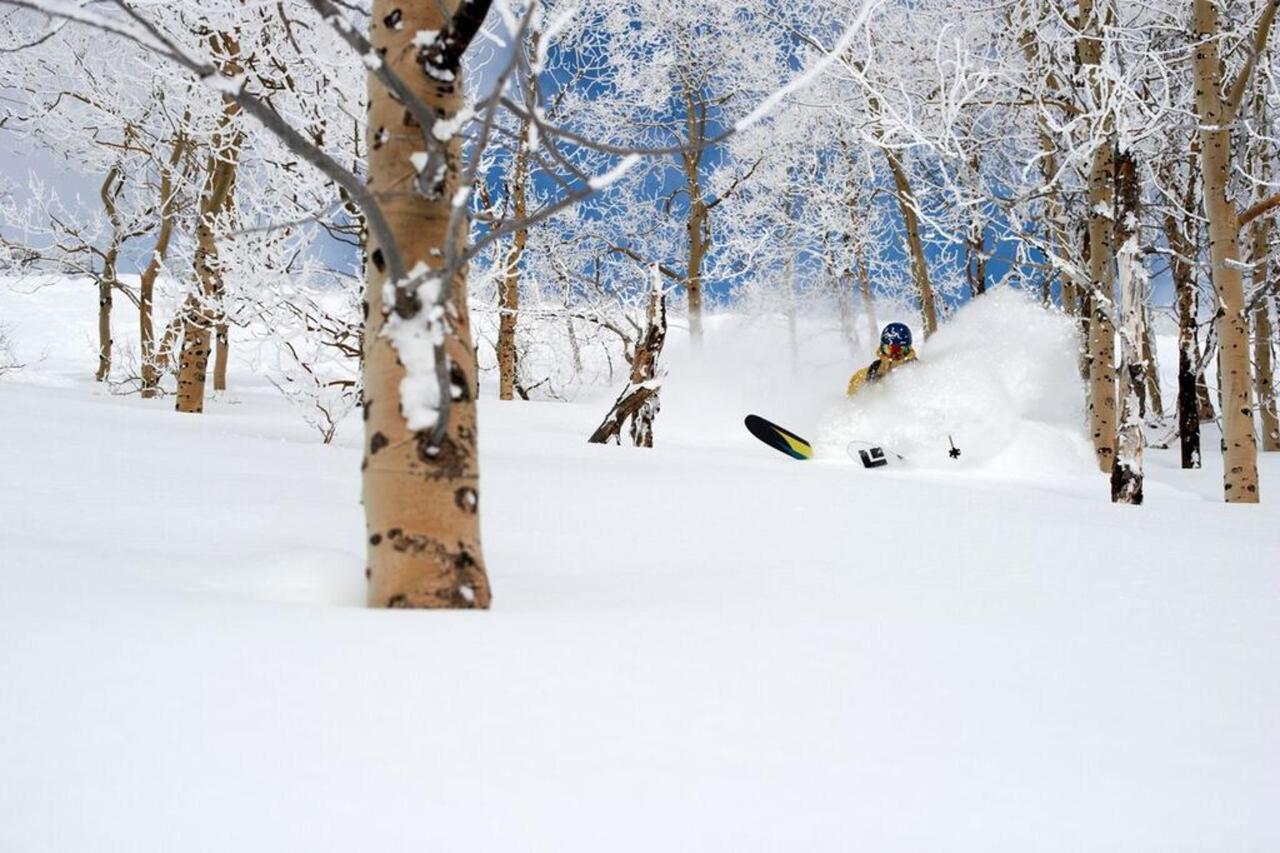 esquí-snowbasin-ogden-utah.jpg