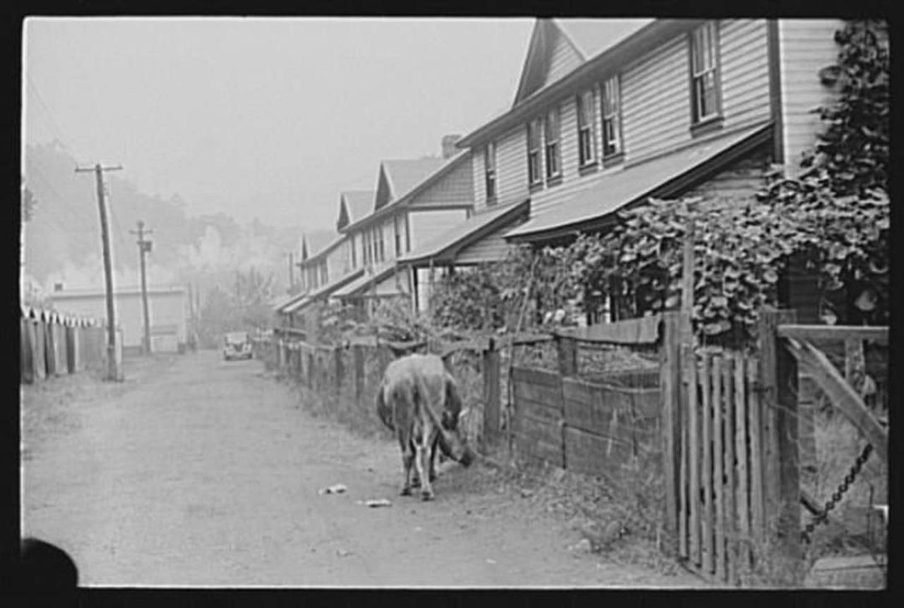 capels-wv-1910.jpg.1080x0.jpg