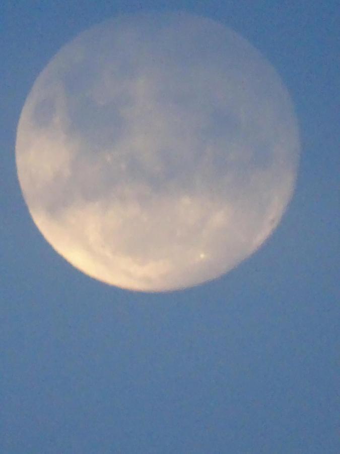 Mond.jpg