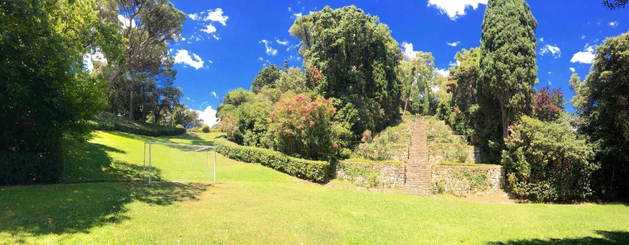 garden13.jpg