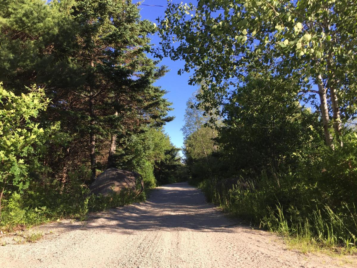 18 Trail.JPG
