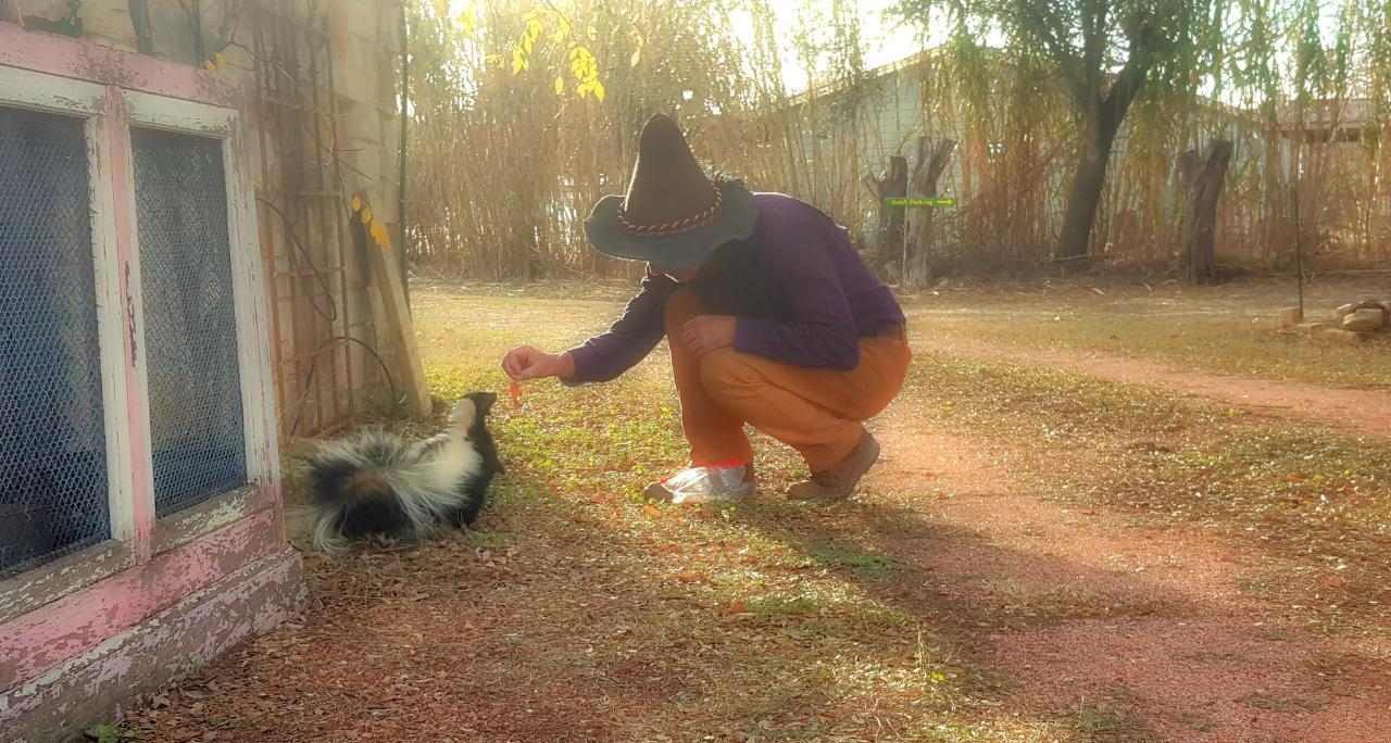Skunky3f.jpg
