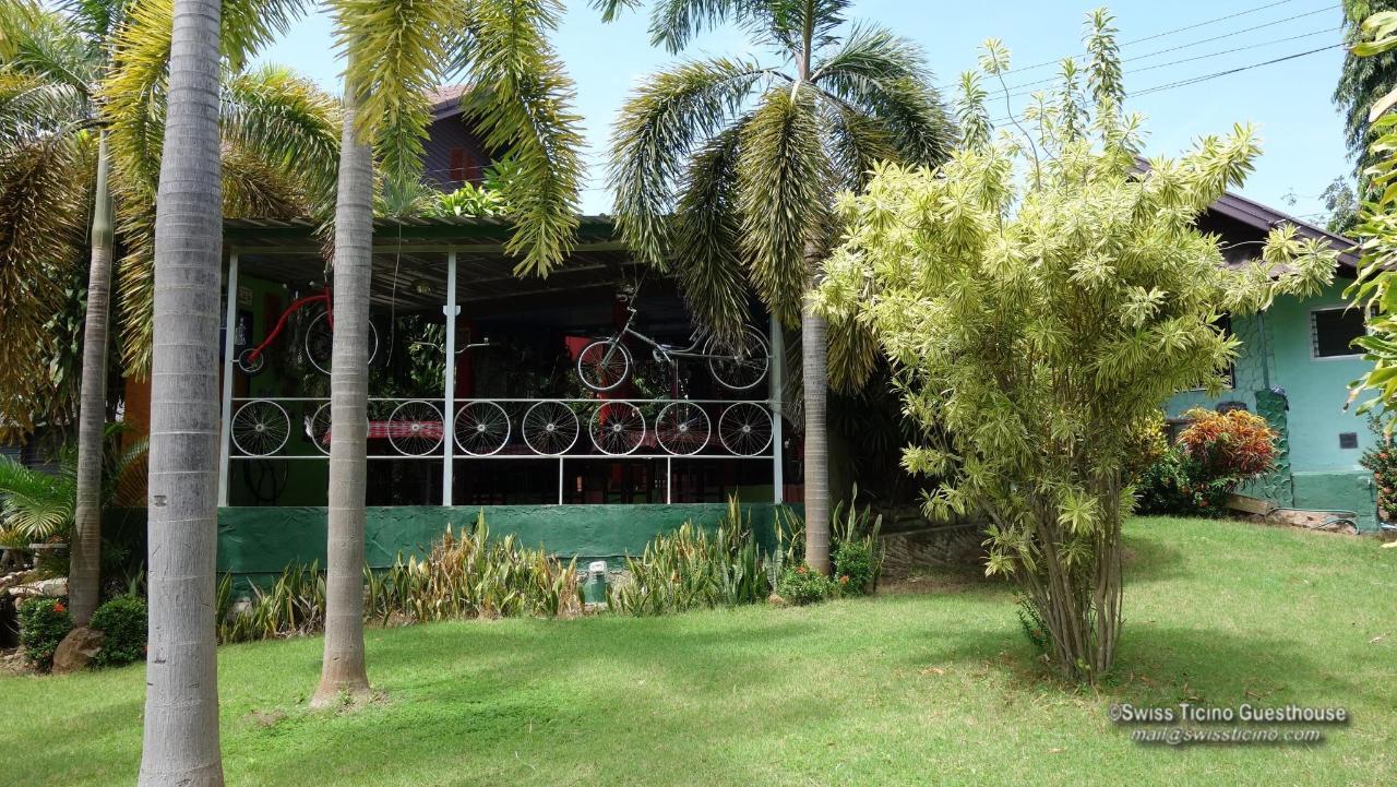 Garden (7).jpg