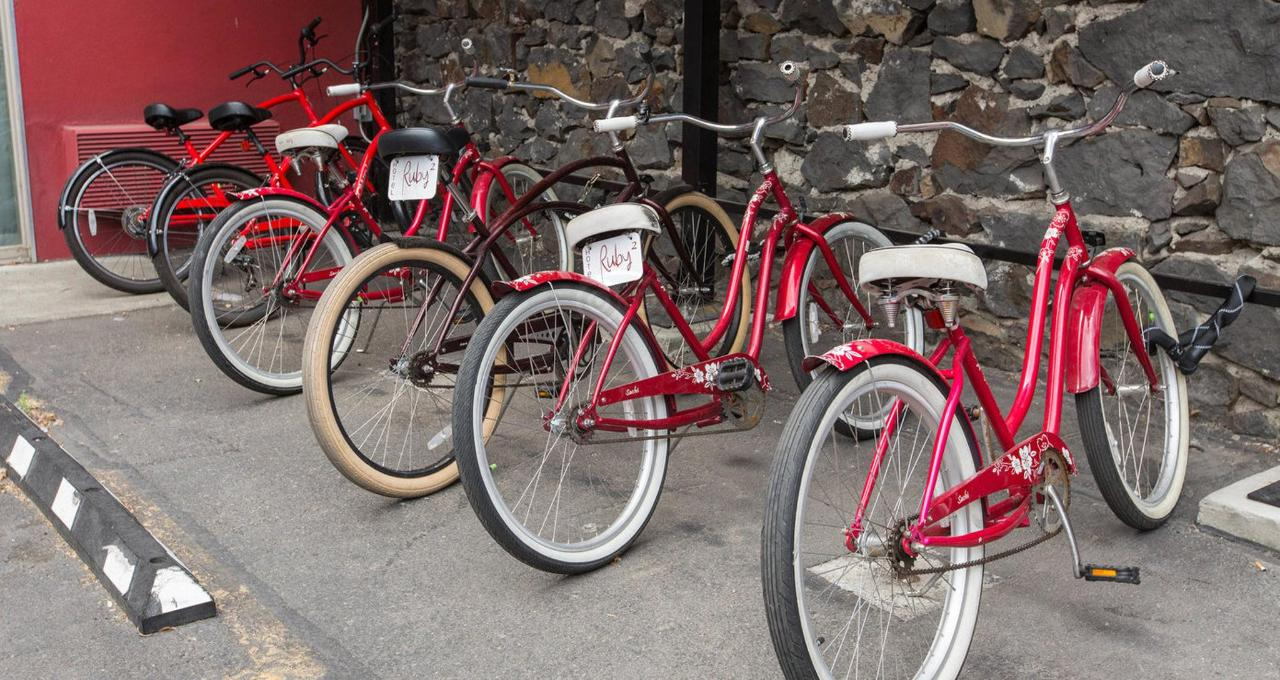 bikes--v8835214.jpg