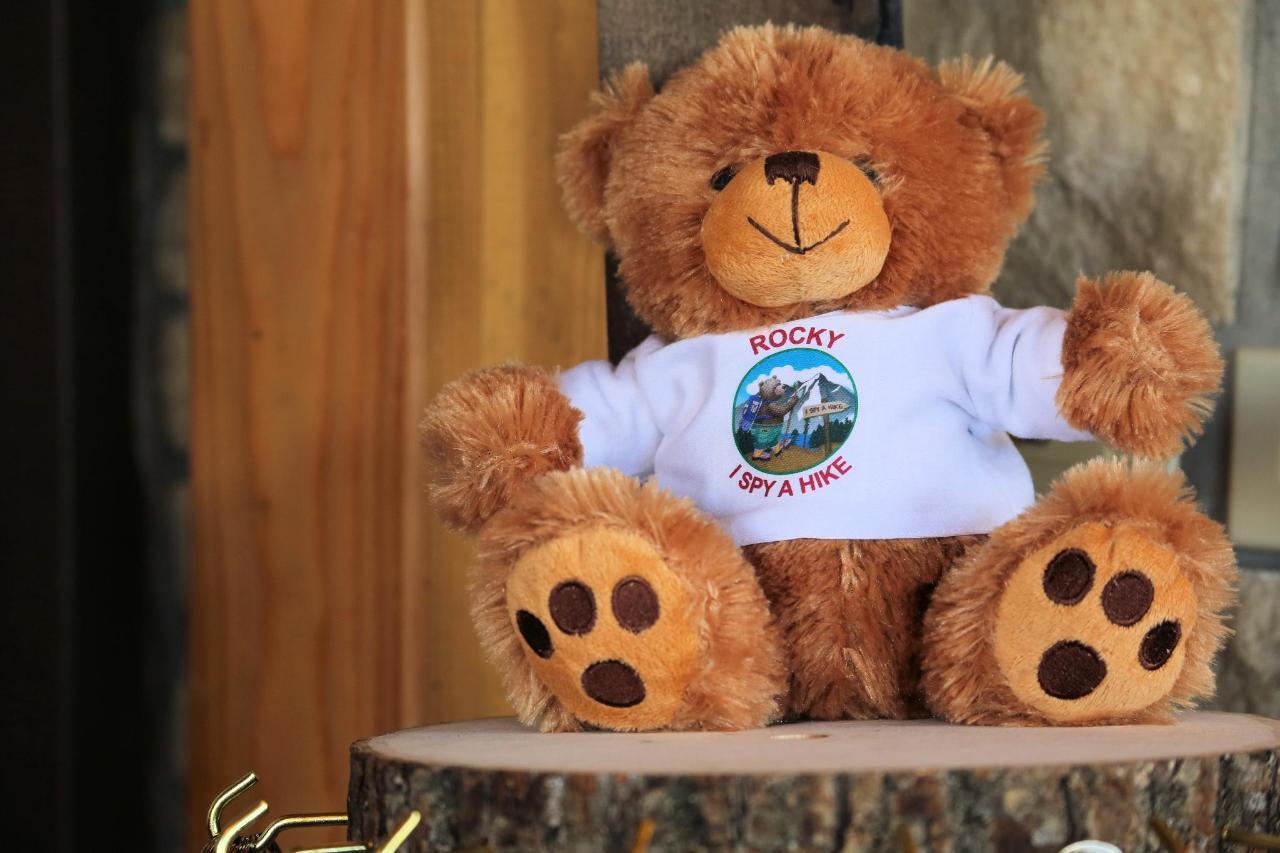 Sundry I Spy a Hike Bear.jpg