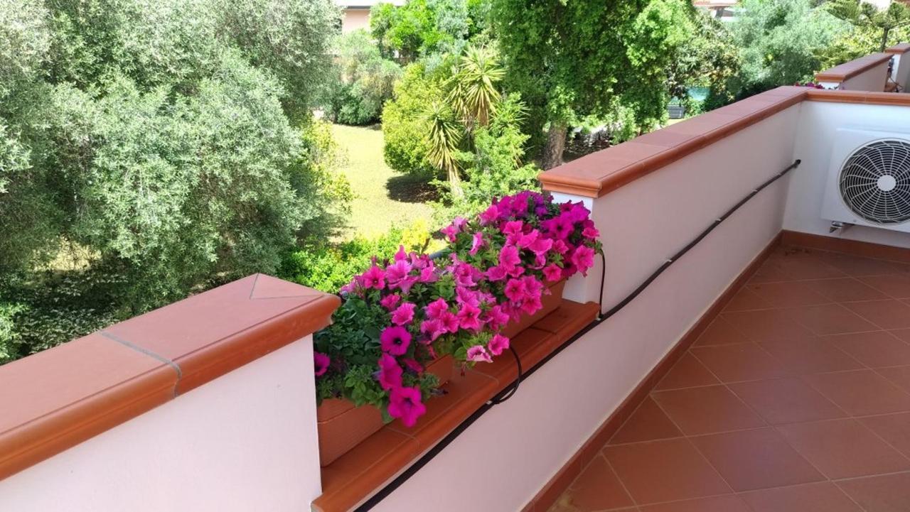 balcone_fiori.jpg
