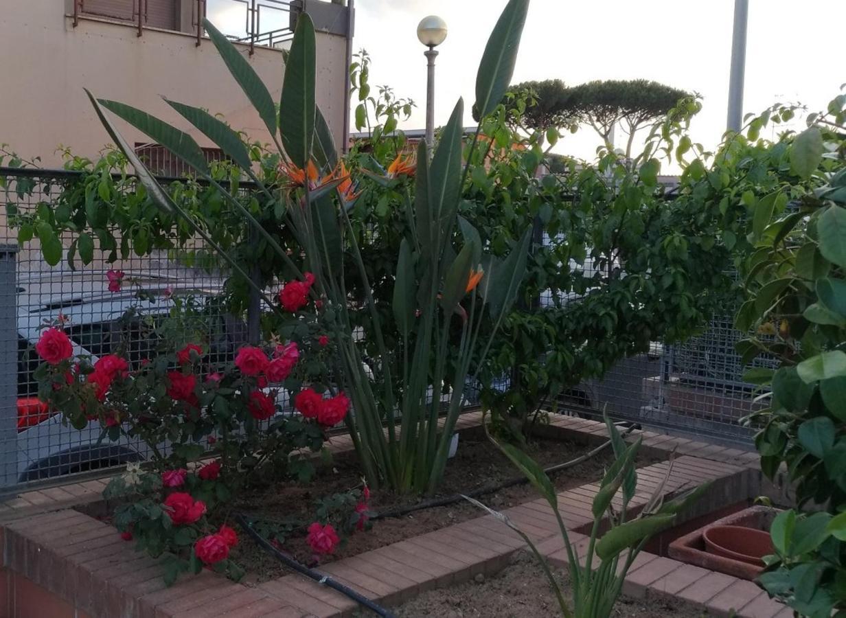 fioriera_giardino.jpg
