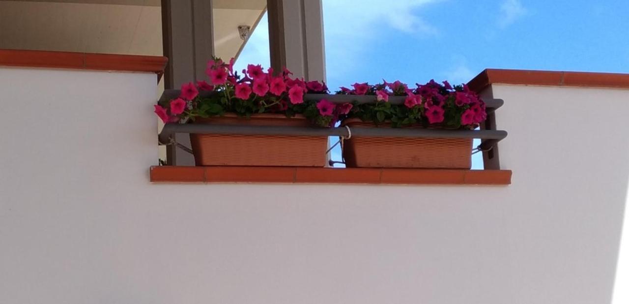 fioriera_balcone.jpg