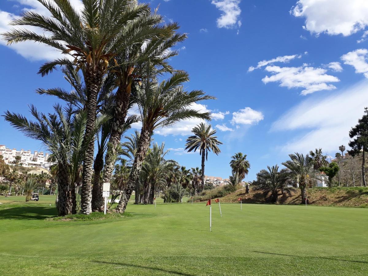 Palm Golf 2.jpg