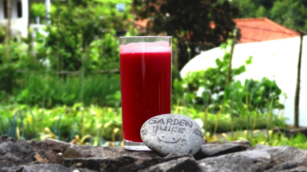 Fresh vegetable juice for breakfast.jpg