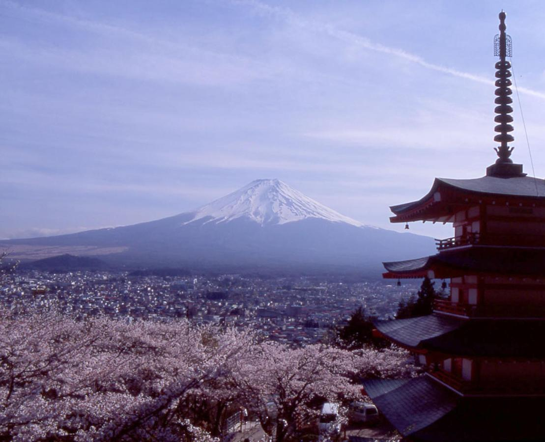 Lost Tower e Sakura e Mt. Fuji