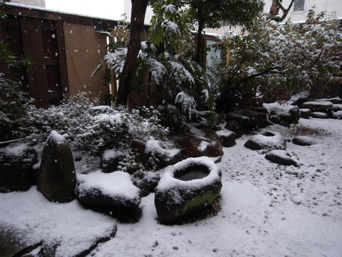 w庭R0011628雪化粧.JPG
