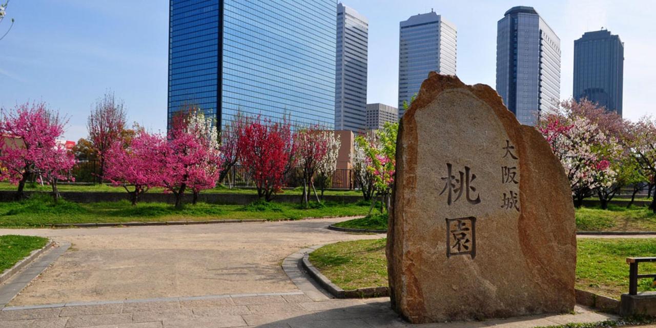 Spring_View (2).jpg