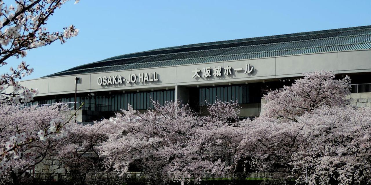 Spring_View (4).jpg