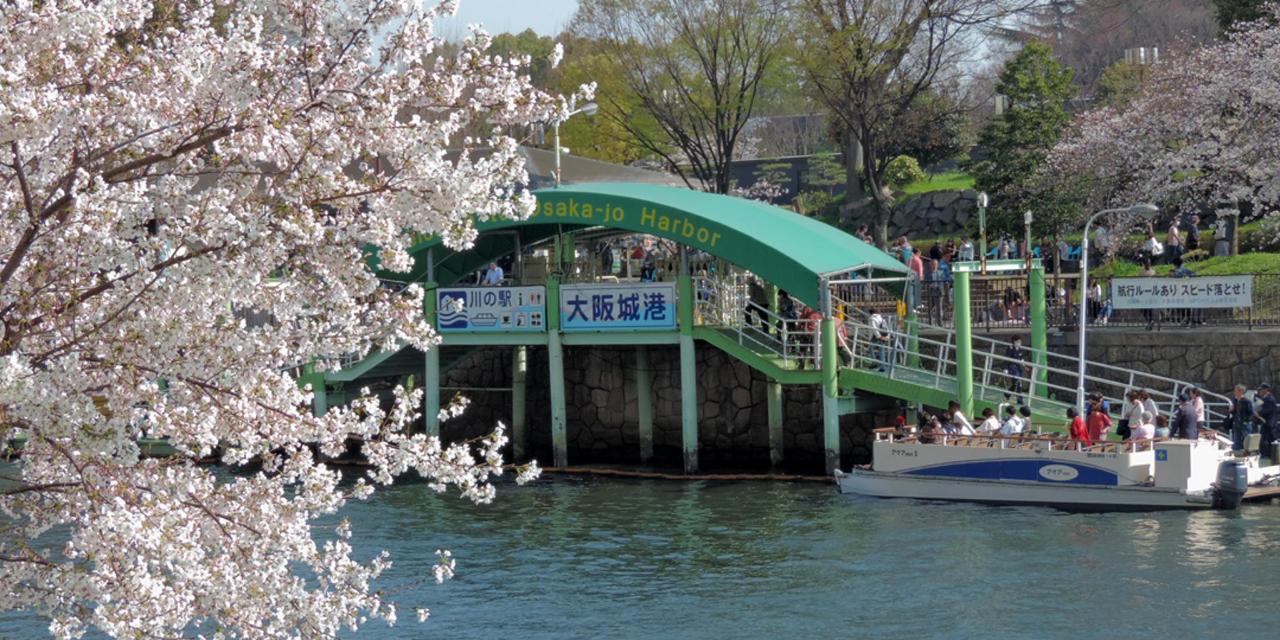 Spring_View (5).jpg