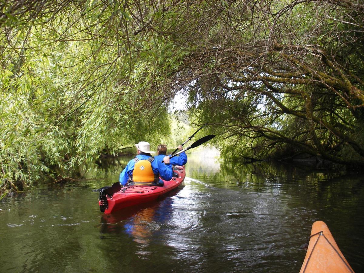 Kayak LE 2.JPG