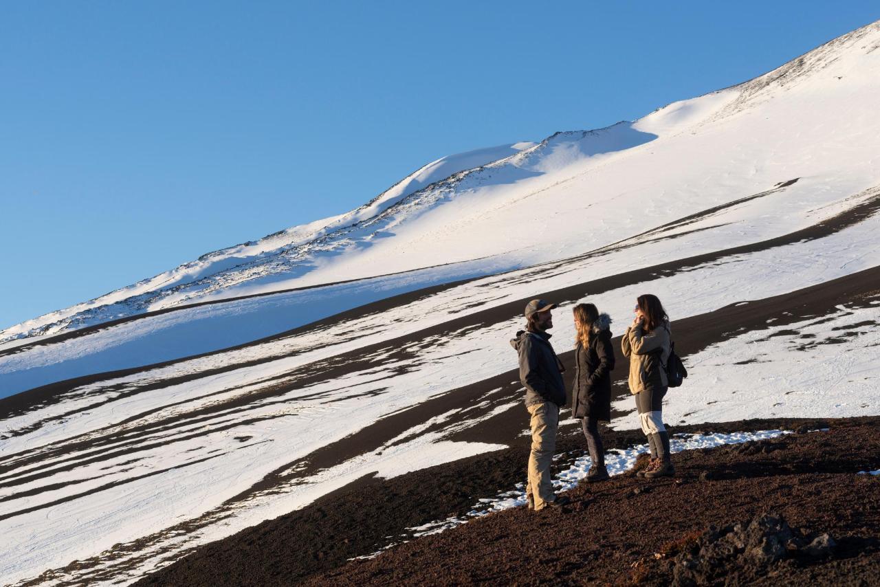 Vistas Volcán Osorno 3.jpg