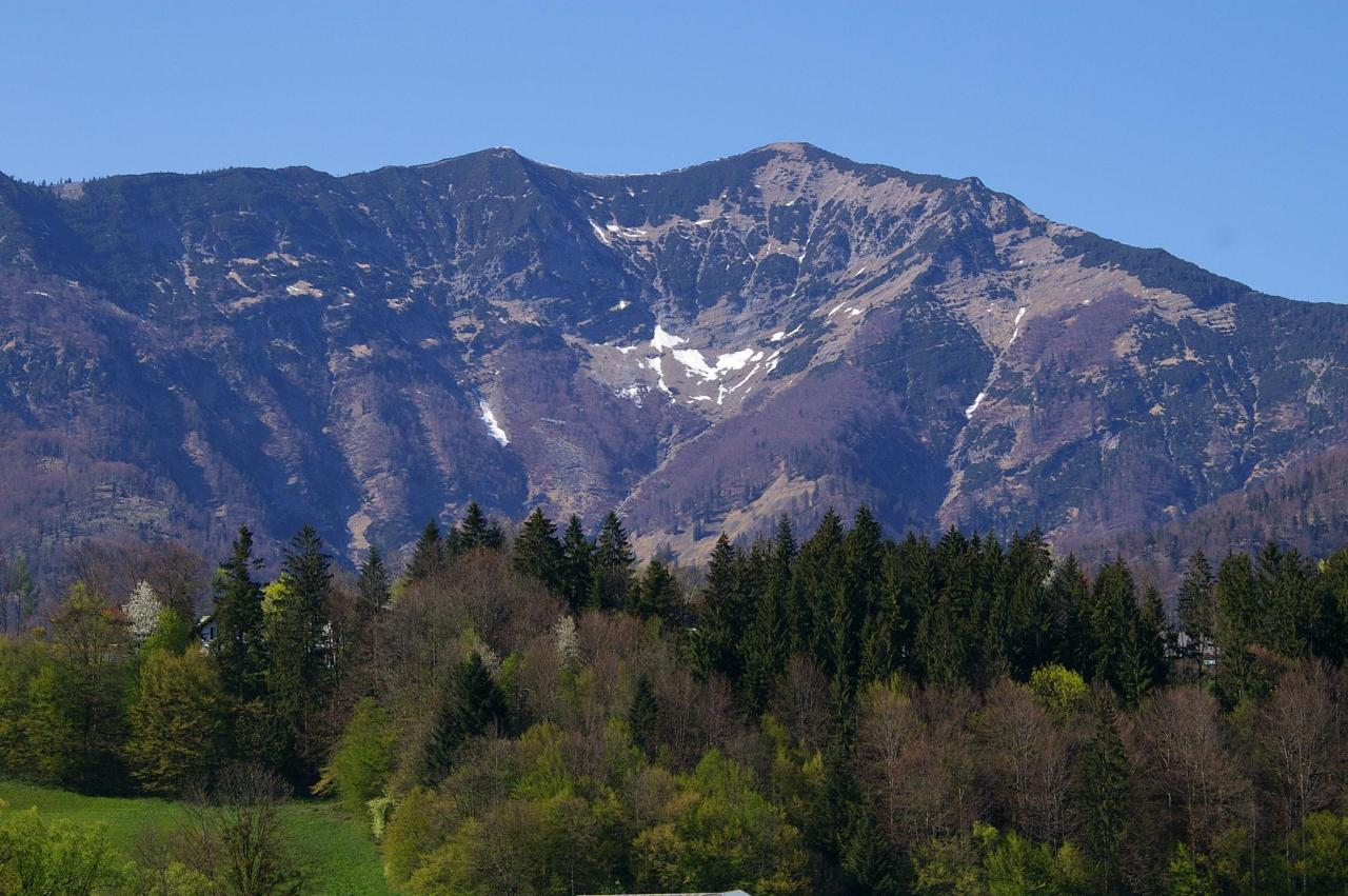Leonsberg Bad Ischl