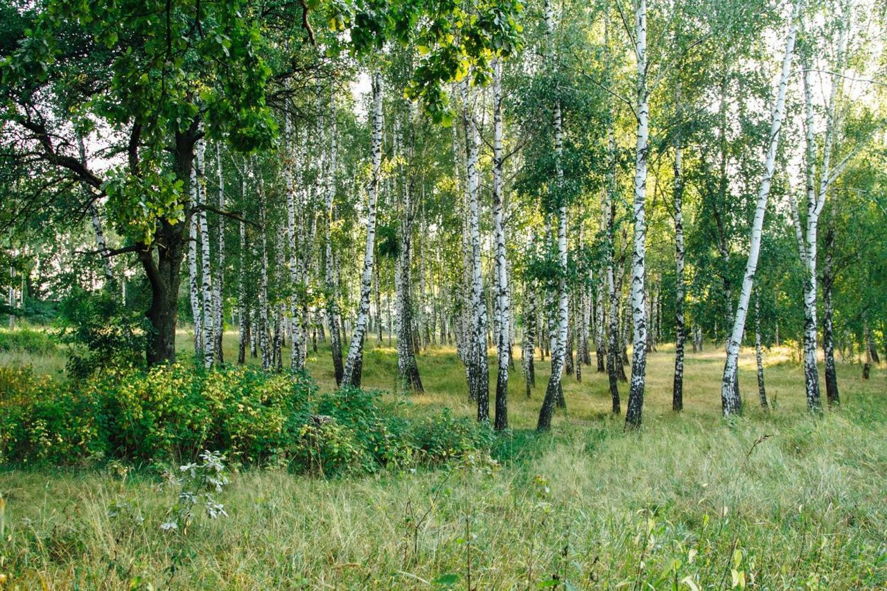 Landscape reserve Khutor Chubynsky