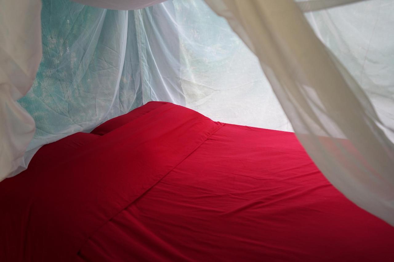 amazing mosquito net