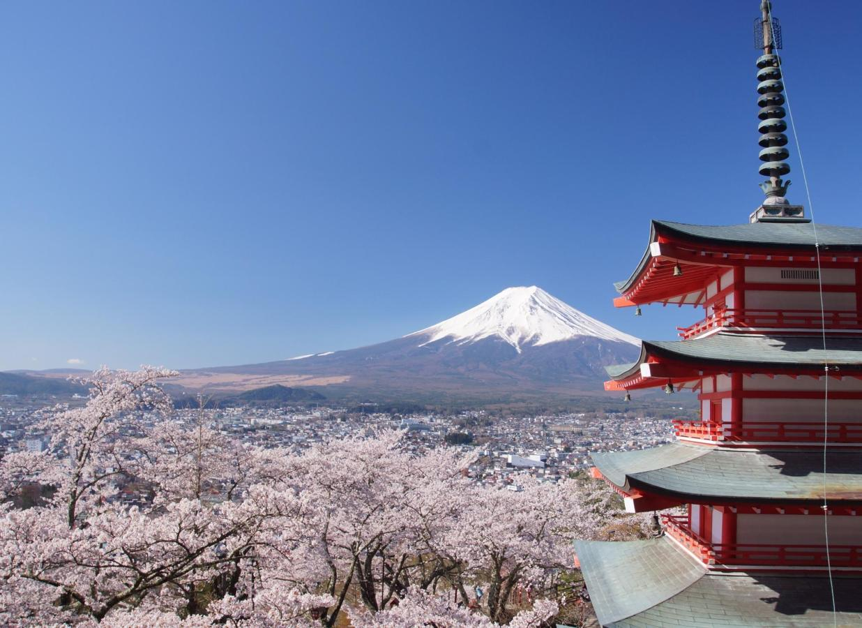 Mt. Fuji and cherry blossoms and towers