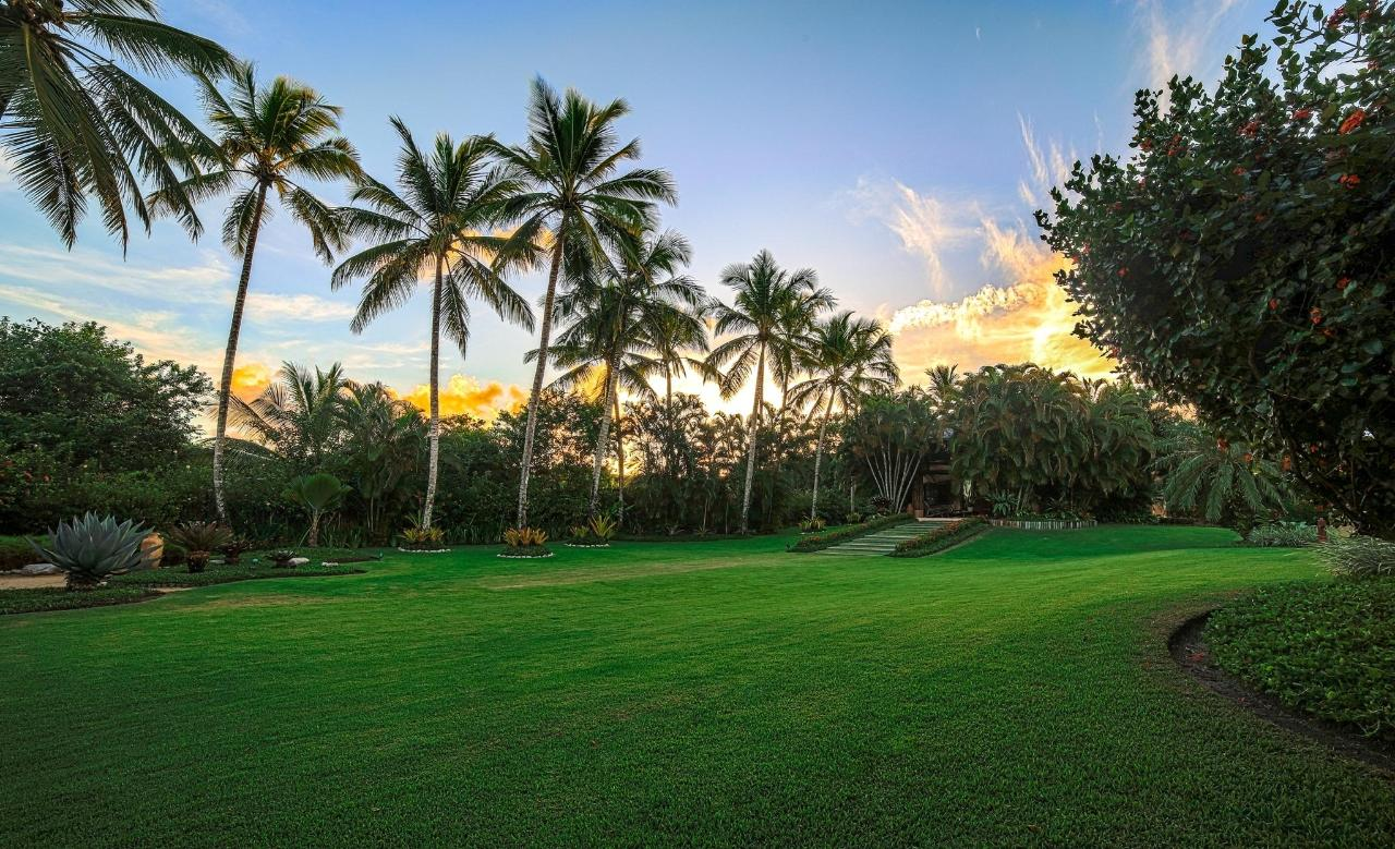 lush_tropical_garden