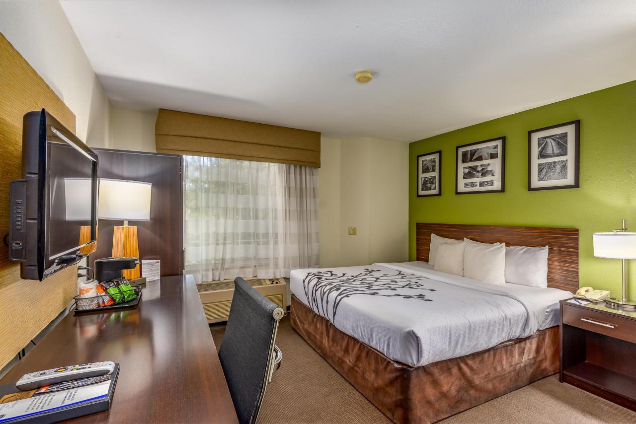 Room 239-1.jpg
