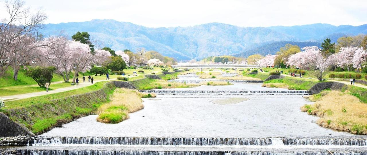 Kamogawa river in spring
