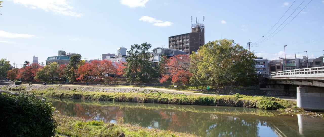 Kamogawa river in autumn