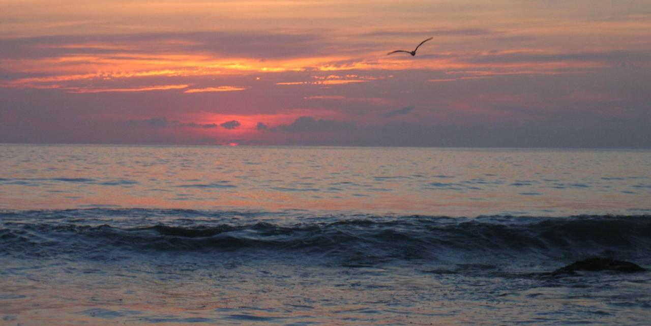 Sunset Lori08 IMG_2286.JPG
