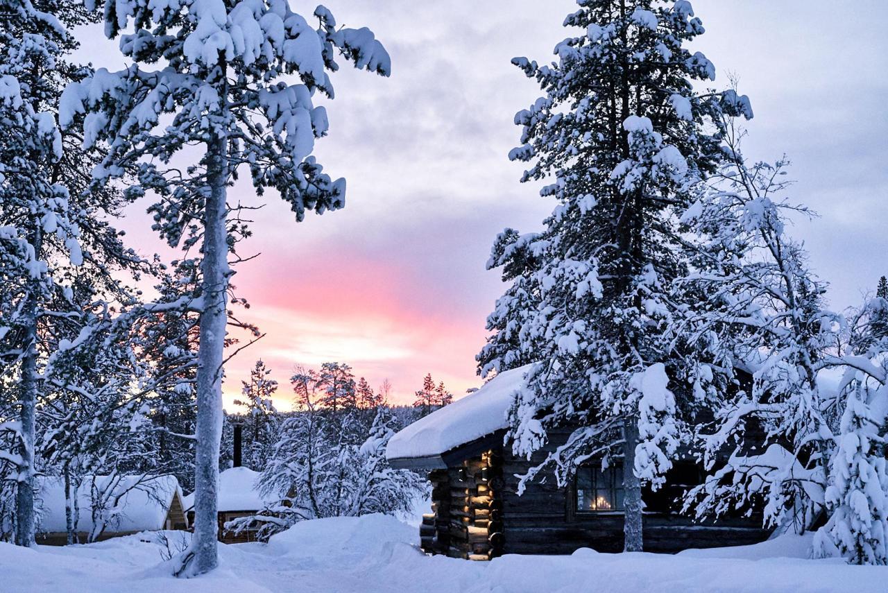 Polar Aurora Cabins_DSC0199.jpg